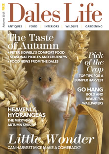 Dales Life Autumn 15 Cover